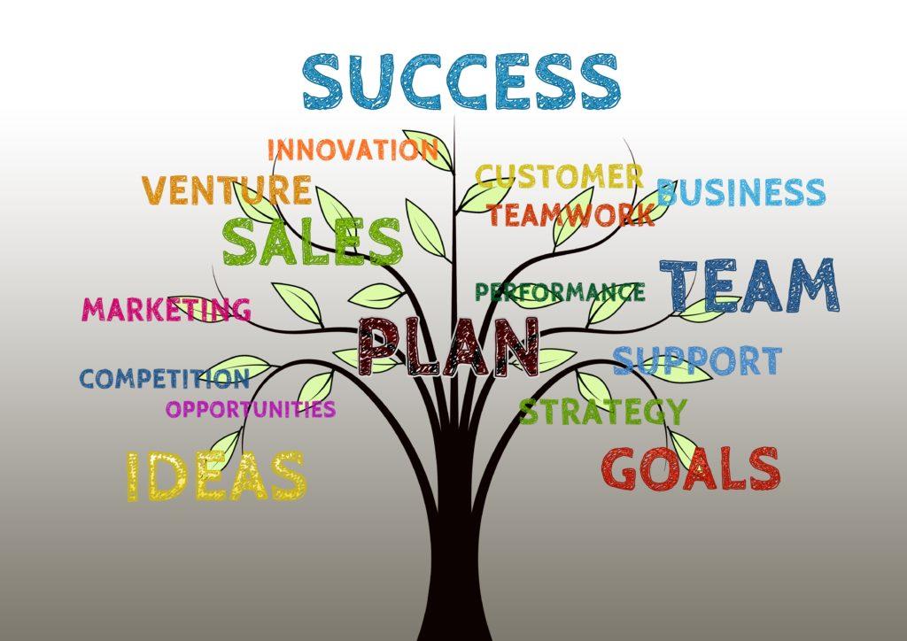 SMV bestyrelse - succes